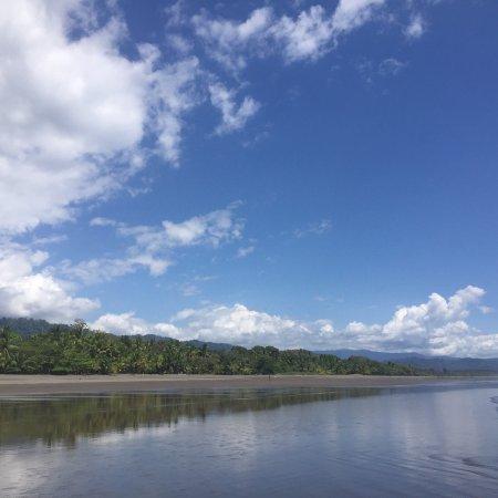 Playa Matapalo, Costa Rica: photo0.jpg