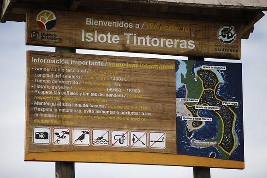 Puerto Villamil, Ekuador: Islote Tintoreras