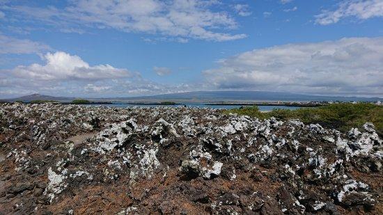 Puerto Villamil, Ekuador: lava rocks