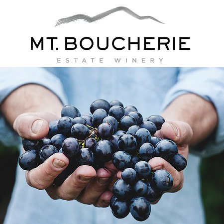 West Kelowna, Canada: Mt. Boucherie Estate Winery