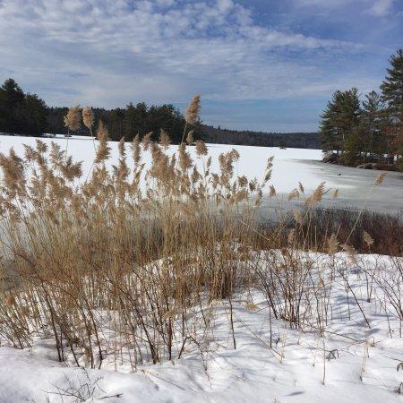 Auburn, Nueva Hampshire: photo0.jpg