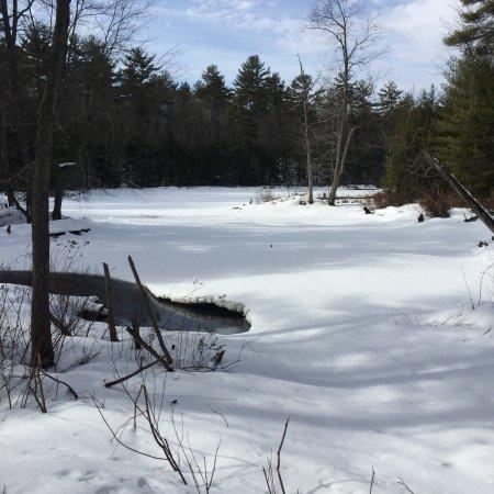 Auburn, Nueva Hampshire: photo3.jpg