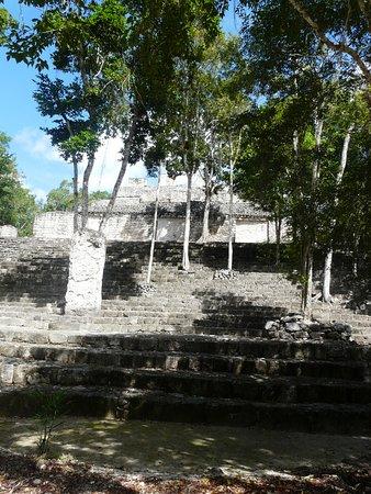 Campeche, Mexico: Bewachsener Tempel