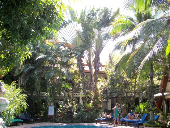 Thai Palace Resort : le jardin arboré