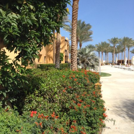 Stella Di Mare Beach Resort & Spa Makadi Bay: photo1.jpg