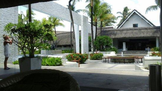 Ambre Mauritius: TA_IMG_20180222_112545_large.jpg
