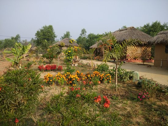 Birbhum District, Indien: Aruni Resorts Cottages ,Joydeb Kenduli,Birbhum,WB