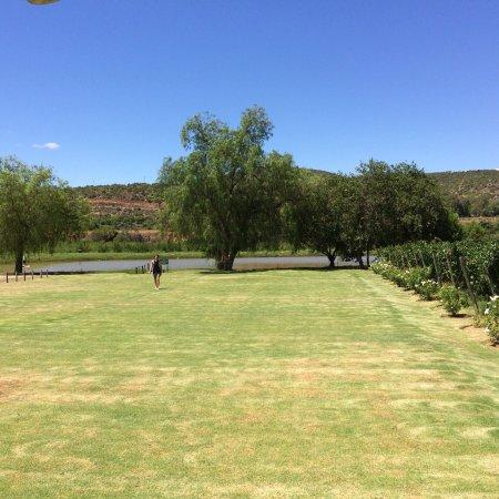 Karusa Vineyards : photo0.jpg