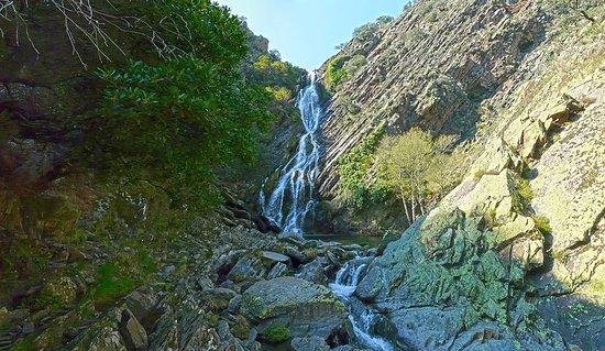 Pinofranqueado, إسبانيا: Chorritero