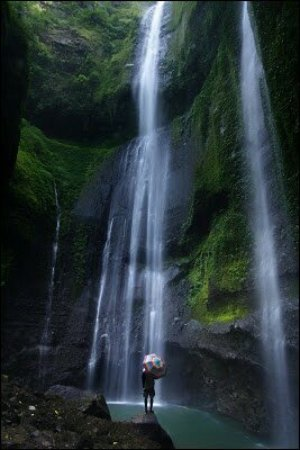 Madakaripura Waterfall : 35_large.jpg