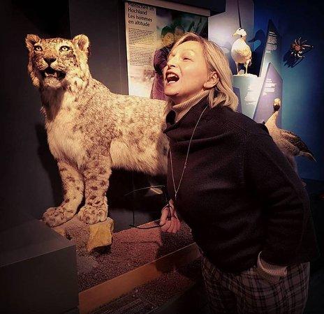 Museum of Natural History (Le Natur Musee Au Grund): Ambienti naturali riprodotti con gli animali che ci vivono. Scherzosa imitazione del felino