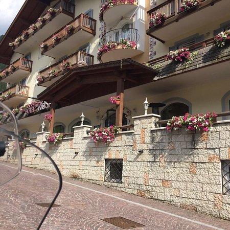Hotel Alla Rosa: photo1.jpg