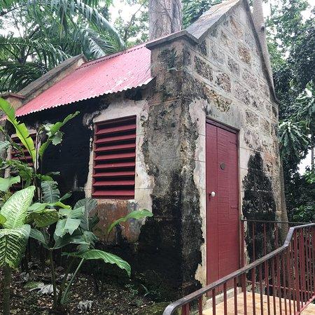 Saint Peter Parish, Barbados: photo9.jpg
