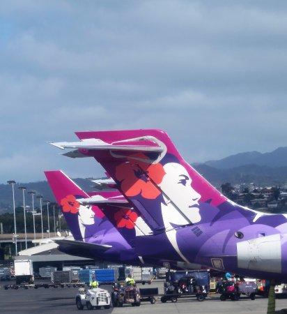 Cheap Flights From Big Island To Las Vegas