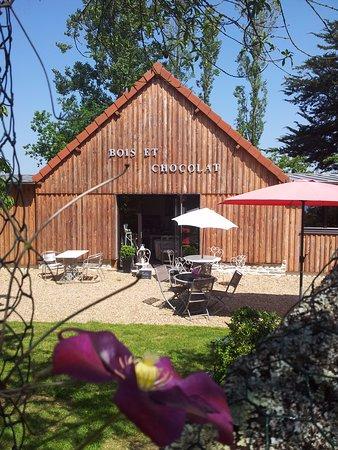 Bain-de-Bretagne, فرنسا: Le jardin B&C