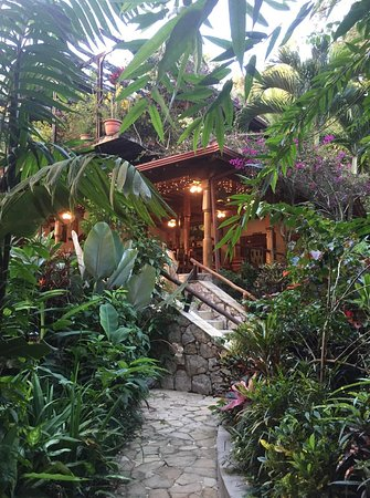 Ian Anderson's Caves Branch Jungle Lodge Picture