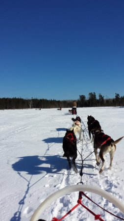 Ely, MN: Crossing a frozen lake as a passenger--great fun!