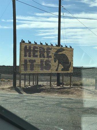 Joseph City, AZ: Jack Rabbit trading post