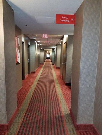 Best Western Plus Austin Airport Inn & Suites: 20180219_180025_large.jpg