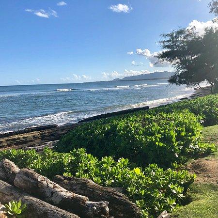 Kauai Coast Resort at the Beachboy: photo1.jpg