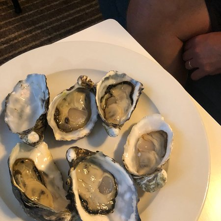 Oyster Cove照片