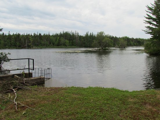 Montague, Kanada: A view from the fish ladder at the back pond.  Take a 2km walk around Beaver Tail Trail.