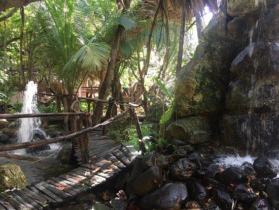 Xanadu Island Resort: Sometimes you think you're in the jungle!