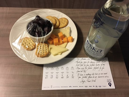 Novotel Toronto North York A Welcome Surprise From Maya