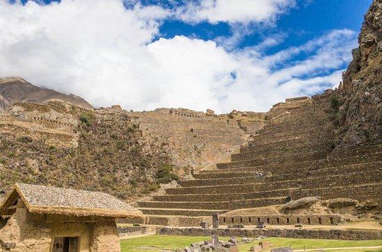 Private Ollantaytambo、Pisac Ruinsツアー、農…