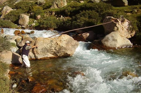 Fly Fishing in Mendoza Including...