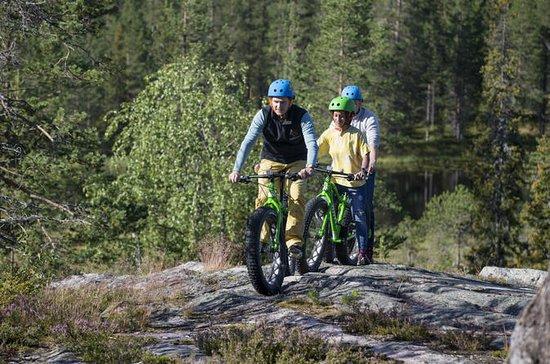Fatbike Day Trip in Rovaniemi