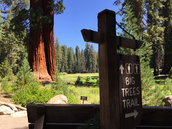 Three Rivers, CA: Sequoia and Kings Canyon NP