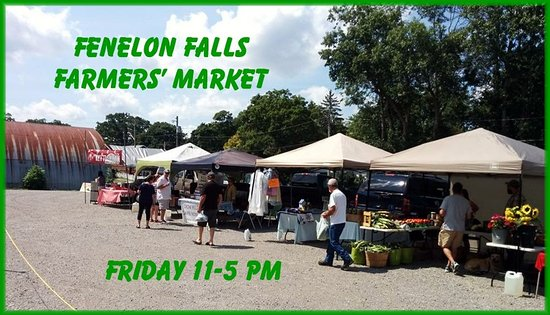 Fenelon Falls Farmers' Market: Great market, great vendors and the smiles are always FREE!