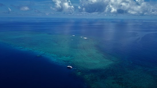 Aerial shot of the Great Barrier Reef - Port Douglas