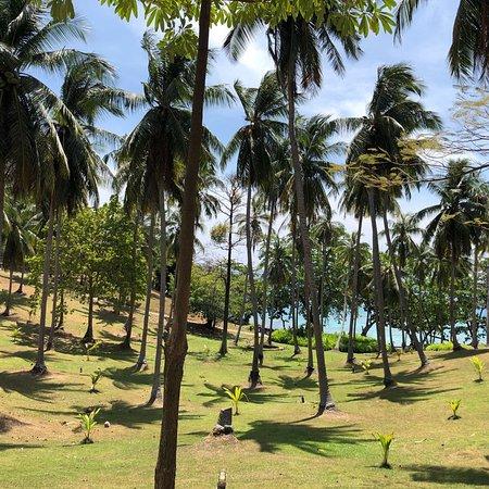 Ko Racha Yai, Tailandia: photo2.jpg