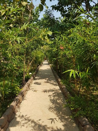 Best place in tadoba kolara gate