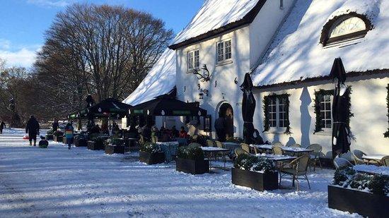 Zelandia, Dinamarca: Sne i Dyrehaven