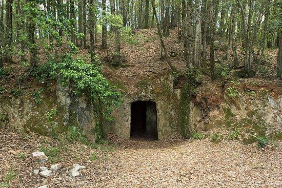 Province of Siena, Italia: Tumulo Etrusco di Mucellena Casole d'Elsa