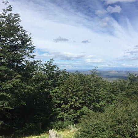 Mirador Cerro Dorotea : photo0.jpg