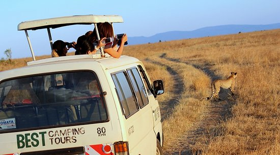 Best Camping Tours & Safaris