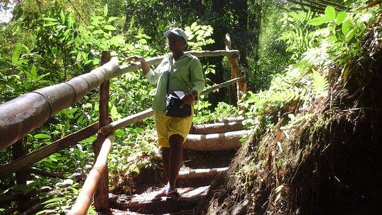Savanna La Mar, Jamaica: Climbing sometimes tall steps made of wood or bamboo.