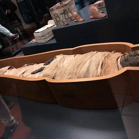 Musei Vaticani Photo