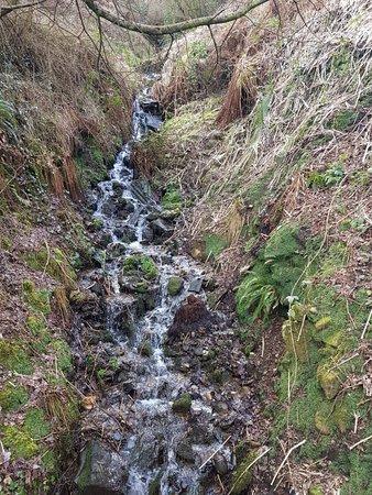 Barry Sidings Countryside Park Pontypridd Wales