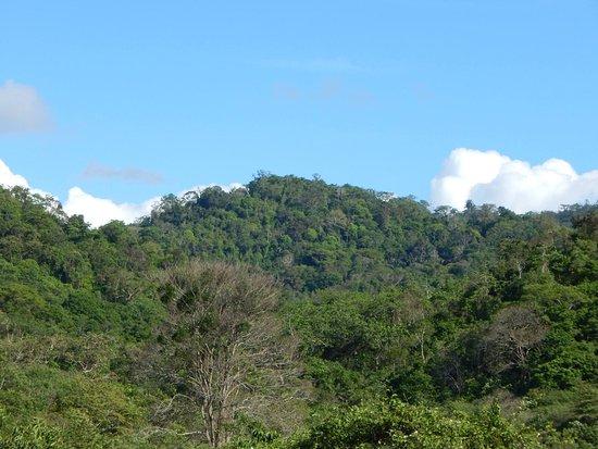 Pedernales, Ecuador: una vista