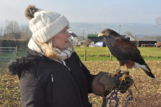 Llangynhafal, UK: Cathy and Storm