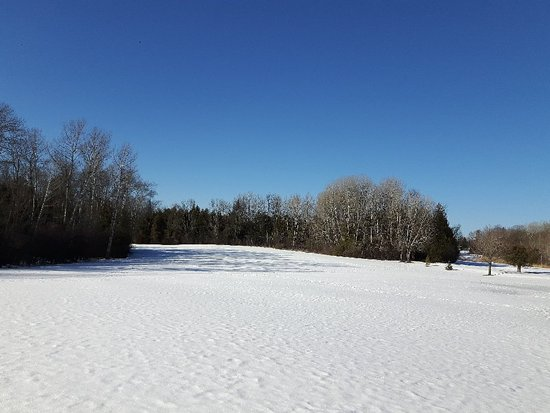 Kawartha Lakes, Канада: 20180222_151508_large.jpg
