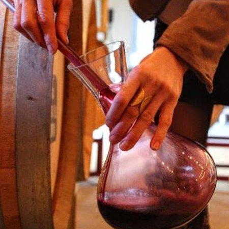 Healdsburg, CA: Tasting wine out of the barrel
