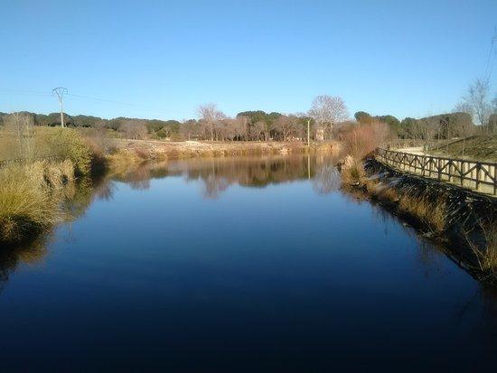 אלקורקון, ספרד: Parque de Las Presillas
