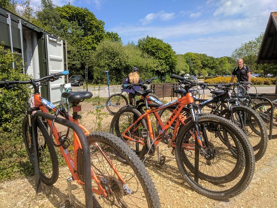 Corfe Castle, UK: Some of our 29er Trek Bikes!