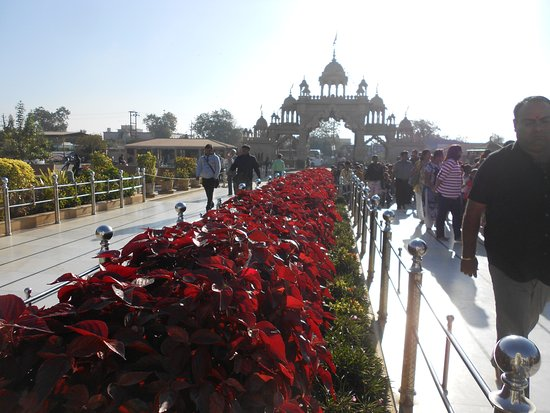 Shree Swaminarayan Temple Bhuj: Nice garden view in front of temple